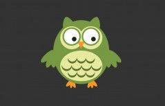 js css3 eyes turning owl